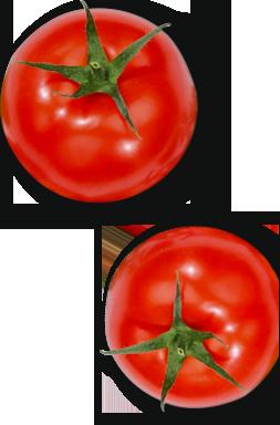 tomate recetas